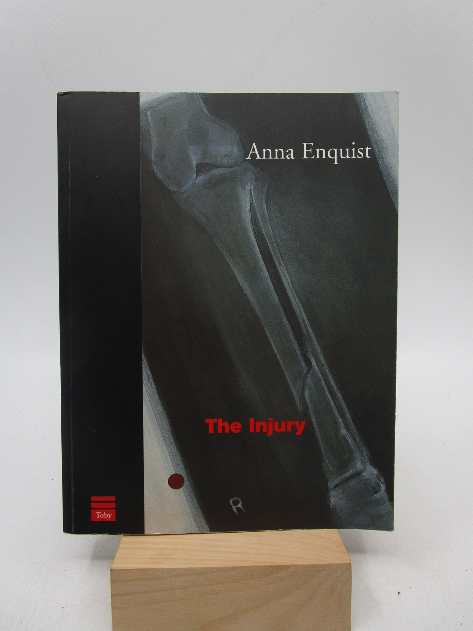 Image for The Injury: ten stories