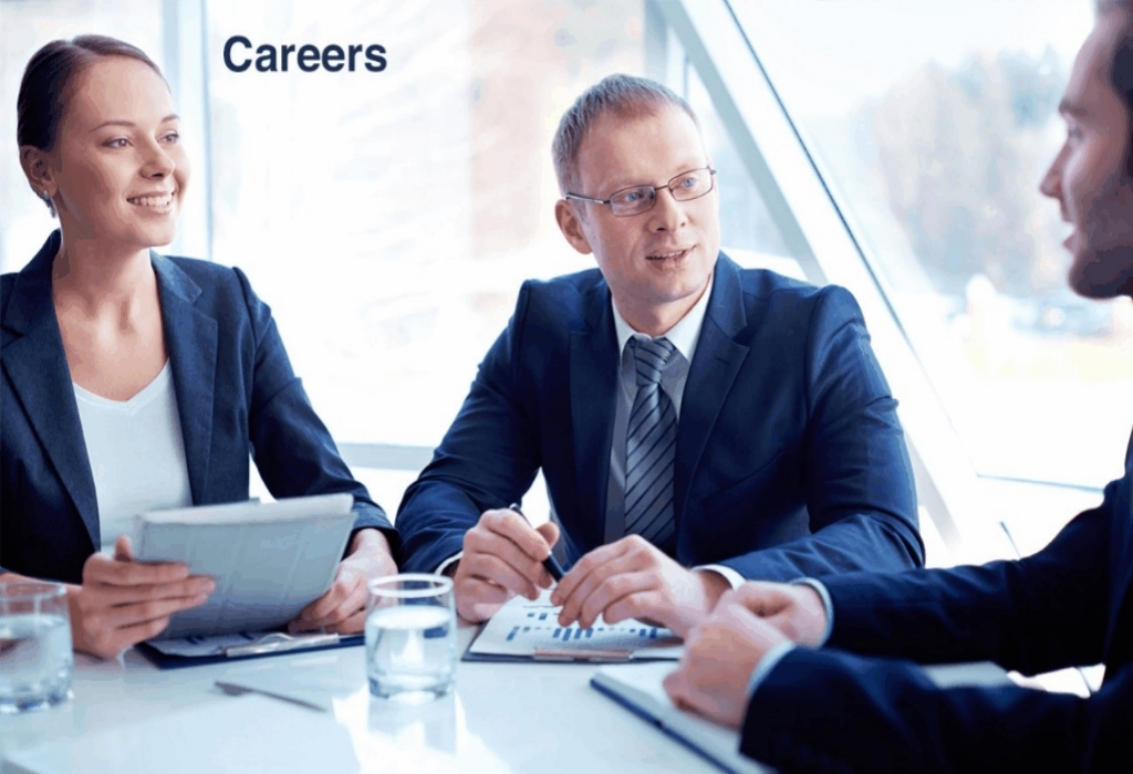Career Opportunities Interviews