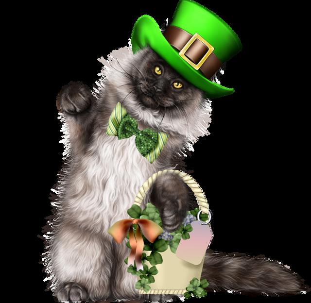 Leprechaun-Cat-With-Beer-02.png