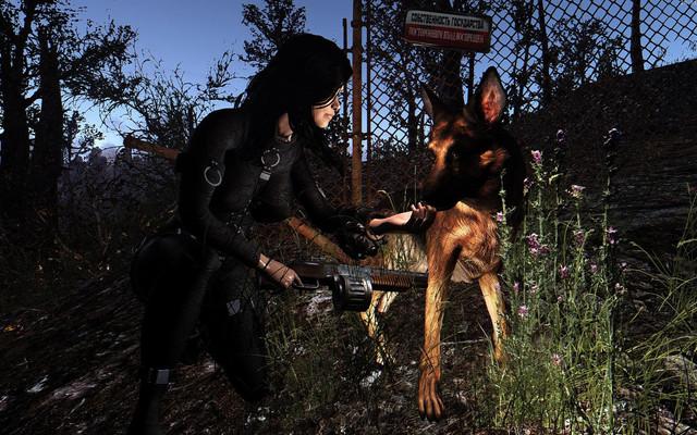 Fallout4 2018 06 09 20 51 40 81
