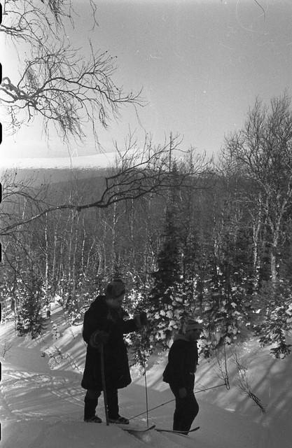 Dyatlov pass 1959 search 53