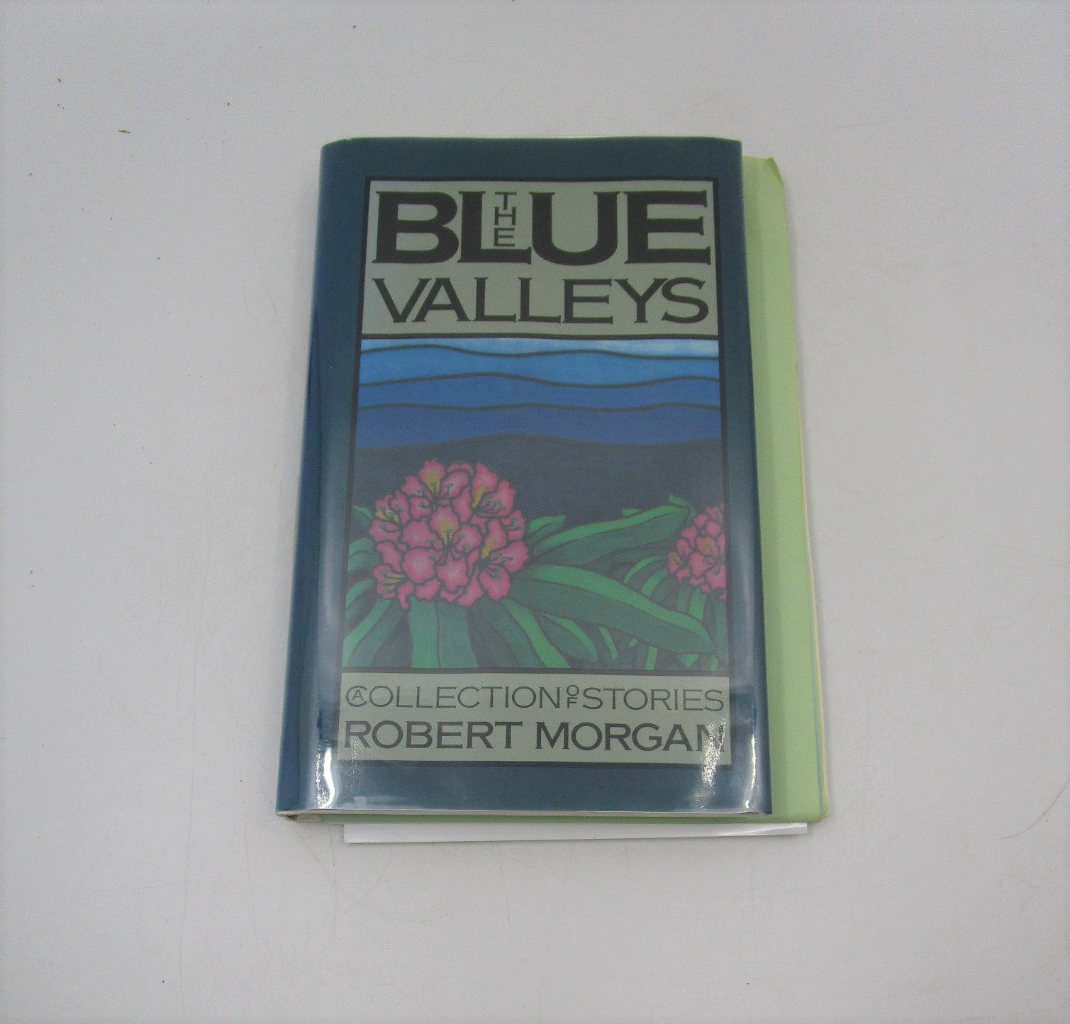 Image for The Blue Valleys: A Collection of Stories (Signed)