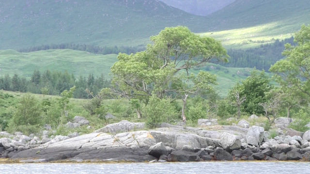 Keep-Turning-Left-15-The-slate-islands-in-4-K-Still017-pines-in-loch-etive