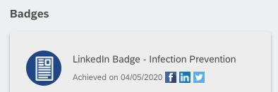 Screenshot of badges menu