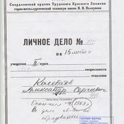 Alexander-Kolevatov-documents-19