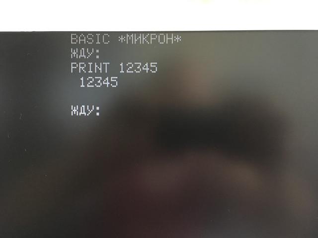 IMG 1351.jpg