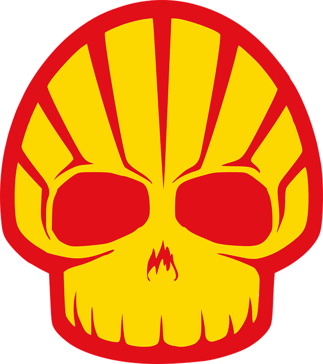 [Image: shell-156157-960-720.png]
