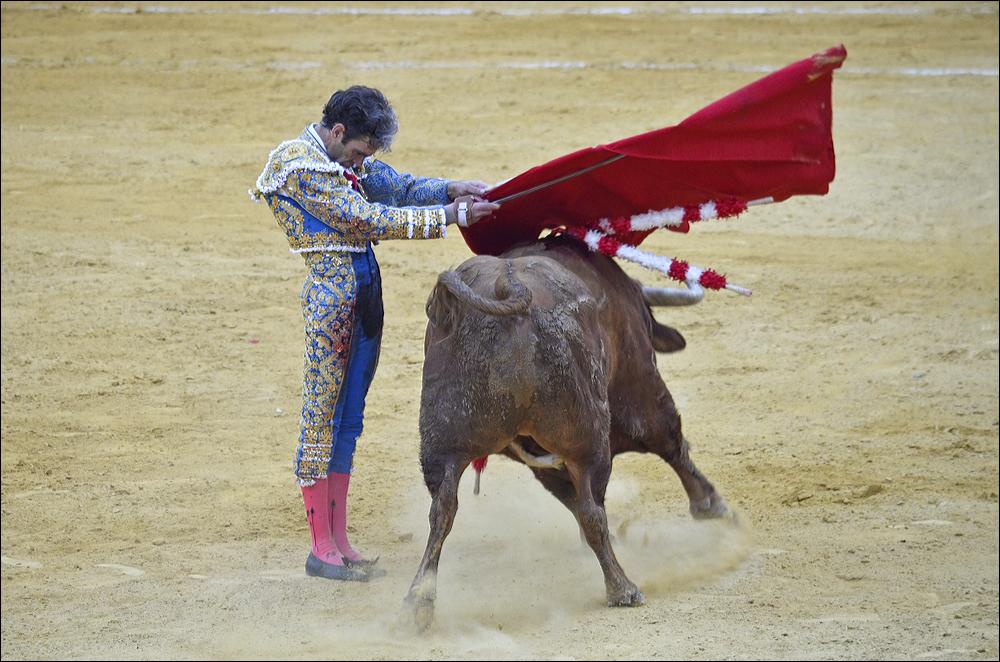Jose-Tomas-0678