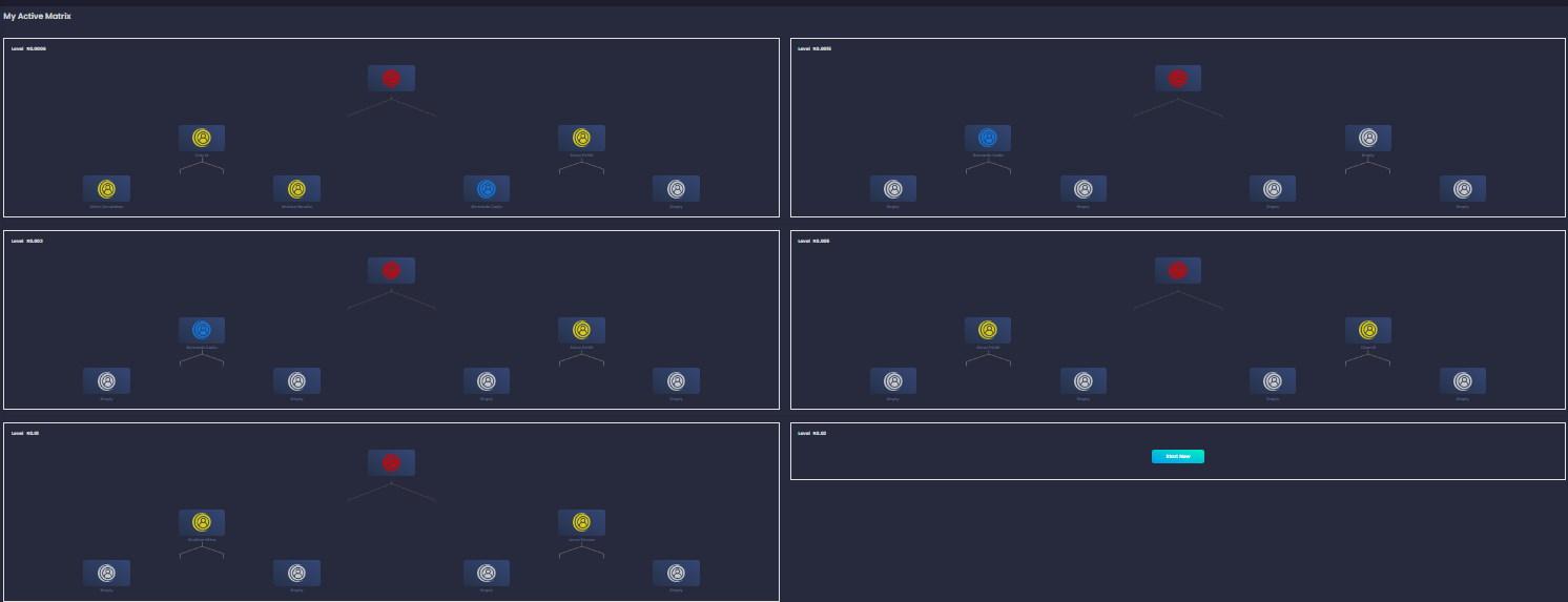 My-matrix-2.jpg