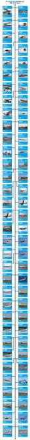 KLM-Fleet-Timeline