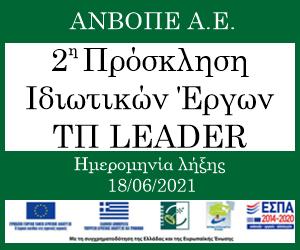 anvope-leader-banner-300x250