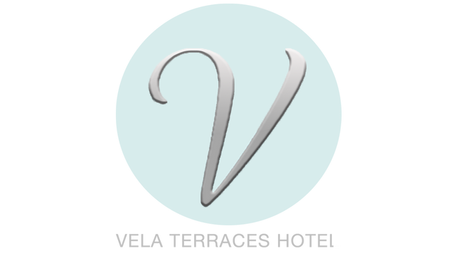 vlc-logo-name2