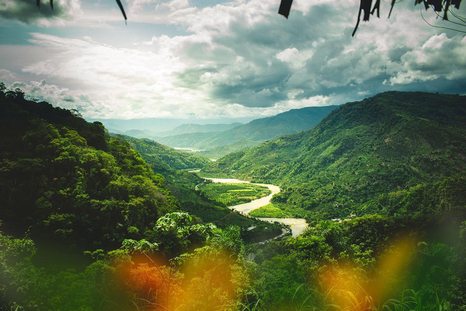 https://i.ibb.co/yNNwL6c/Amazonia-peruana.jpg