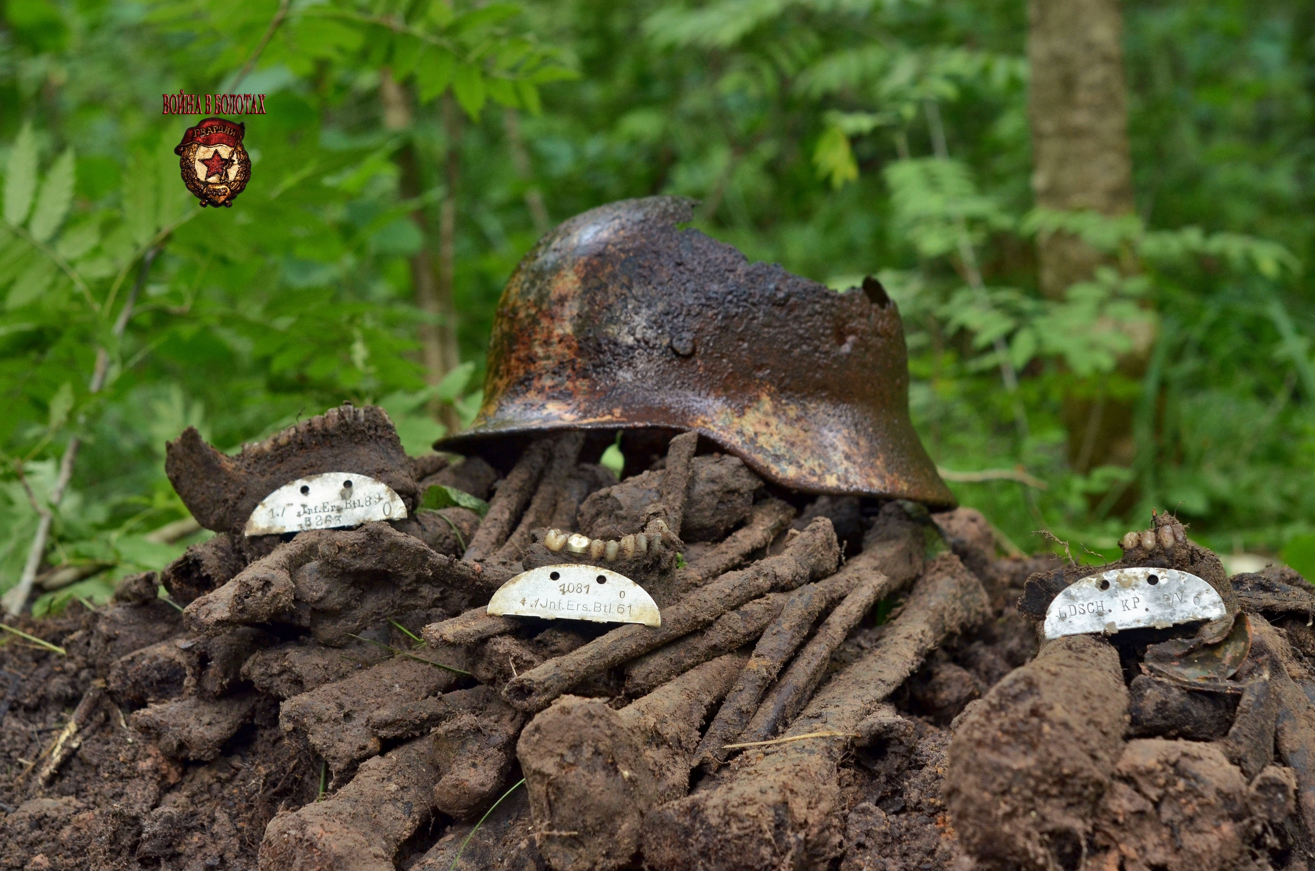 Remains of soldiers of the Wehrmacht army.