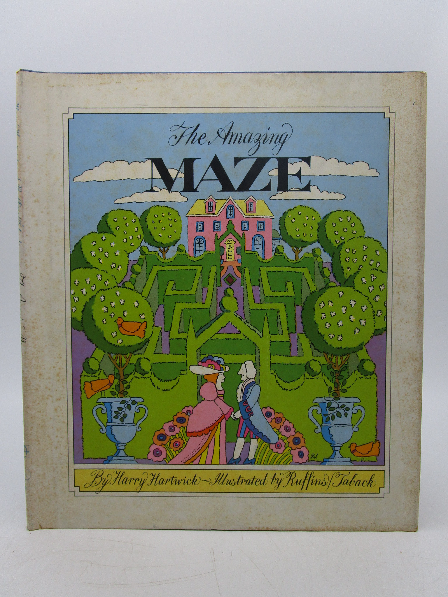 Image for The Amazing Maze
