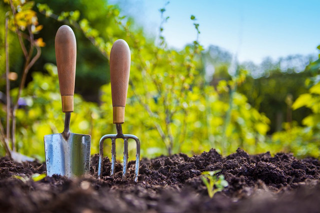 9 Must Have Garden Tools at Home