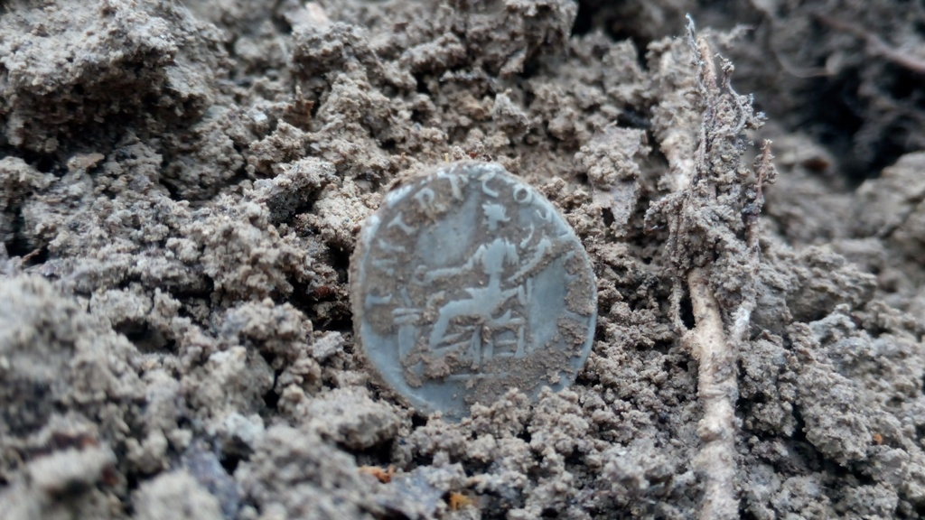 A treasure trove of silver coins of the Roman Empire found using a metal detector in Ukraine