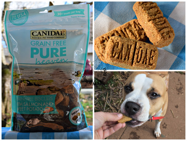 Canidae-Treats