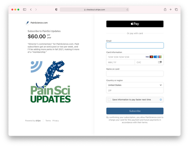 An example of a Checkout page generated by Payment Links.