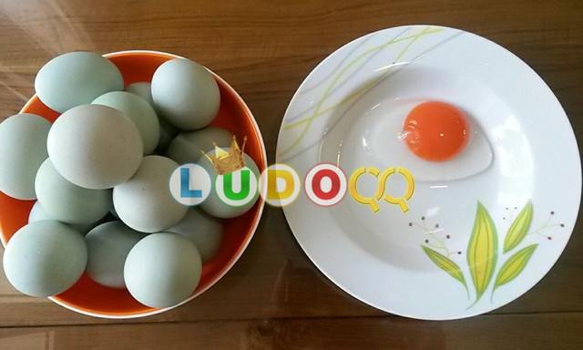 6 Kelebihan Telur Bebek Dibandingkan Telur Ayam yang Jarang Diketahui