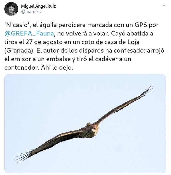 "¿Prohibiriais la caza y la pesca ""deportiva""? Created-with-GIMP"