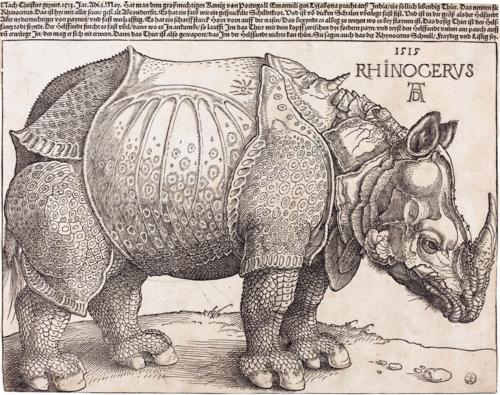 The-Rhinoceros-NGA-1964-8-697-enhanced.png