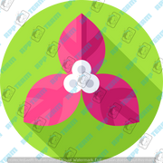 018-flowers