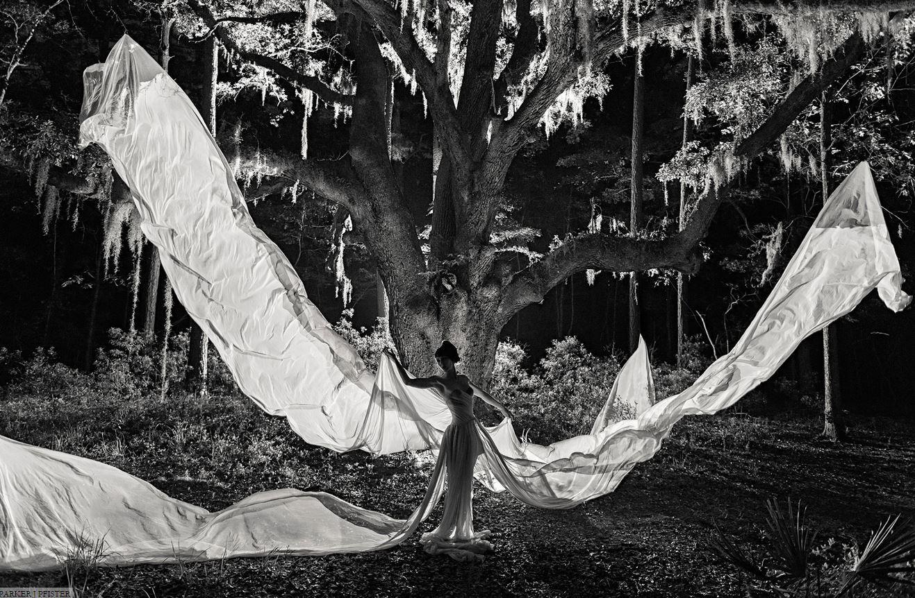 Dress-Woods-PJP.jpg