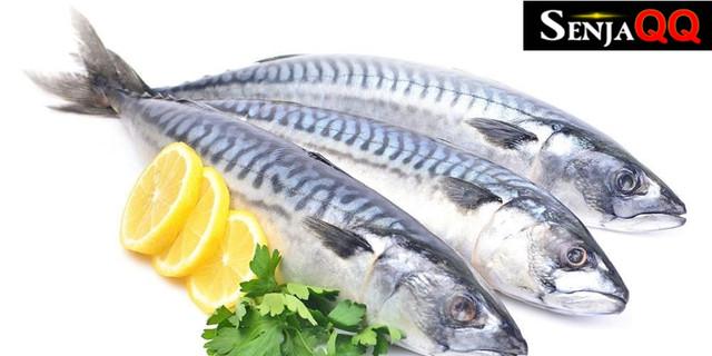 Mengenal 6 Jenis Ikan Laut yang Baik untuk Kesehatan