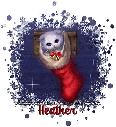 Heather-Stocking-Cat-1-tbs