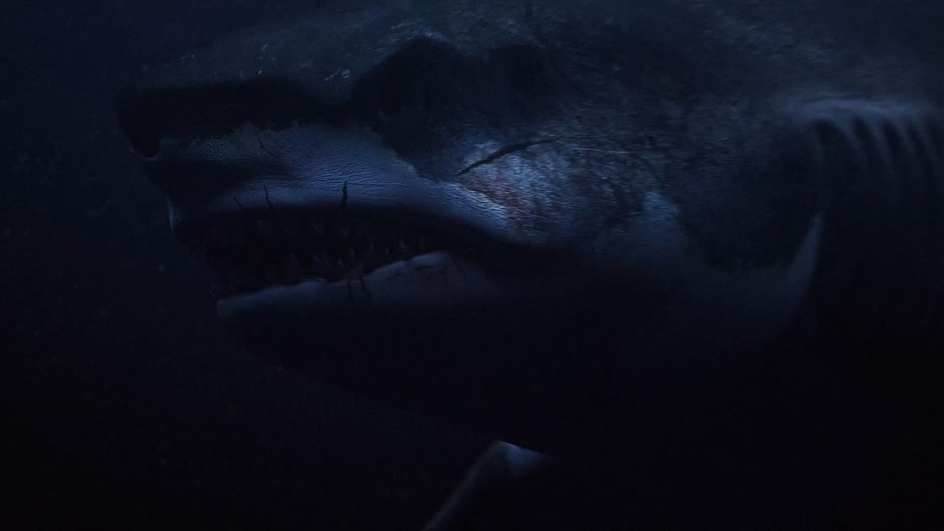 Megalodon | 2018 | BDRip | XviD | Türkçe Dublaj | m720p - m1080p | BluRay | Dual | TR-EN | Tek Link