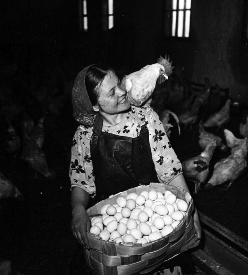 жизнь советской эпохи в фотографиях 46