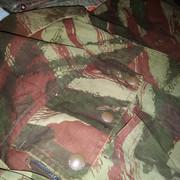 Un peu de camouflage Léopard - Page 6 P-20190810-000742-v-HDR-Auto