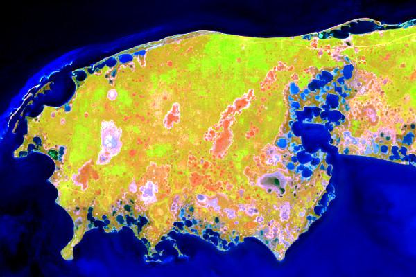 Вигляд Ягорлицького півострова на супутниковому знімку Sentinel-2 від 24 квітня 2020 р. (комбінація каналів 12-8-2)