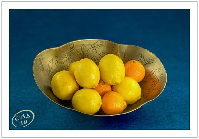 lemons-oranges-1200-CAS04068-D