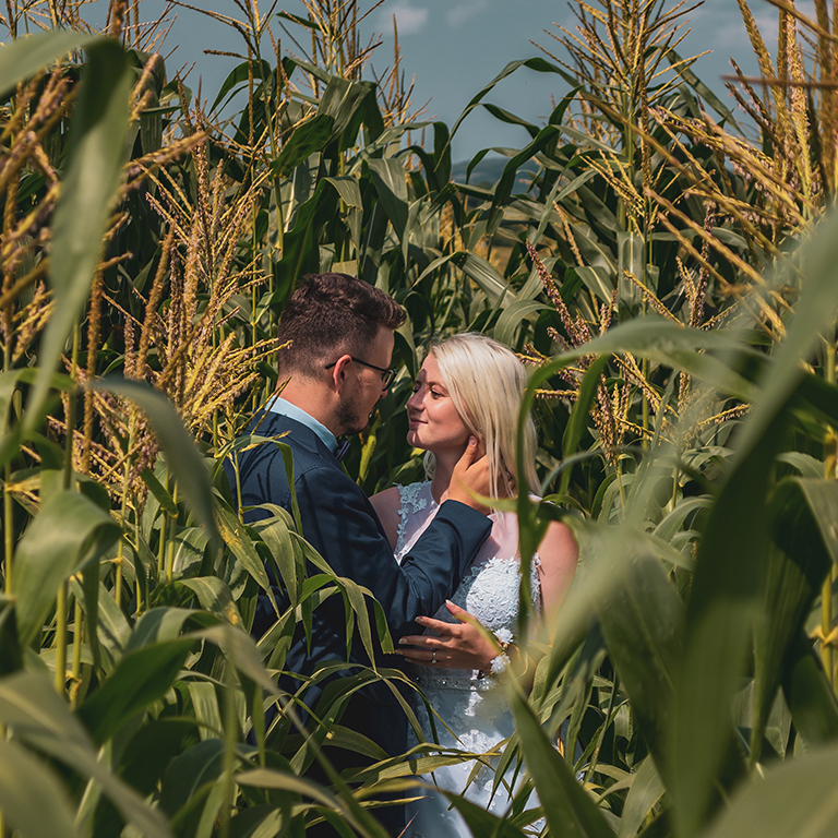 Nedžad and Erna in the corn field