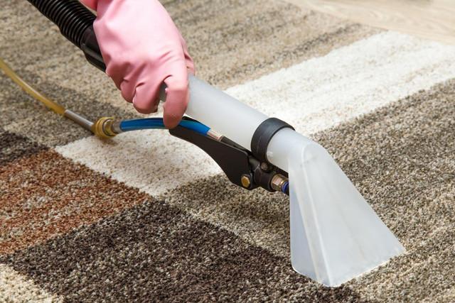Все, что надо знать о чистке ковров и мягкой мебели