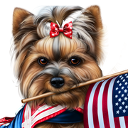 yorkie-4th-of-july-9