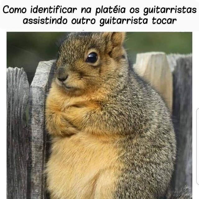 Ser baixista é... (memes, pics, etc) 687b85d7-5044-49dc-984f-8c23b93ce6f6