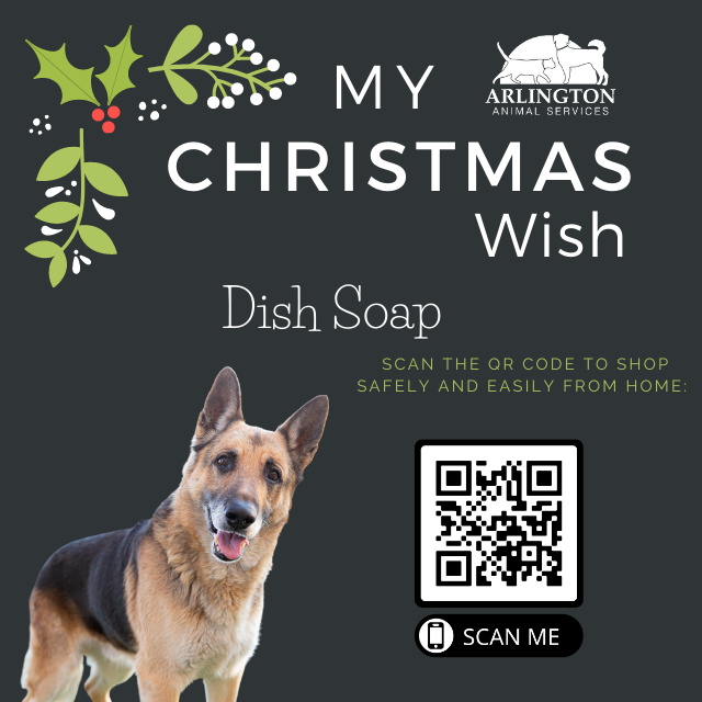 Animal-Services-2020-Angel-Tree-068.png