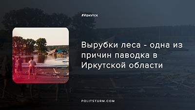 Вырубки леса — одна из причин паводка в Иркутской области