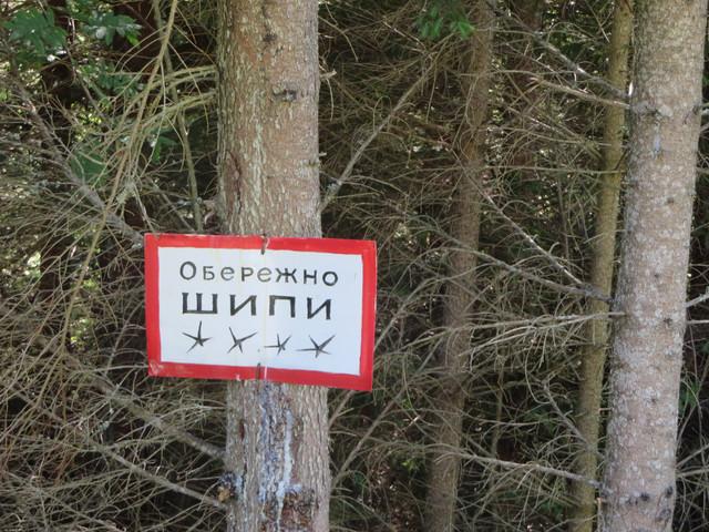 "IMG-8411"" border=""0"