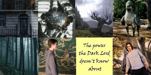 Harry-et-l-autre-pouvoir