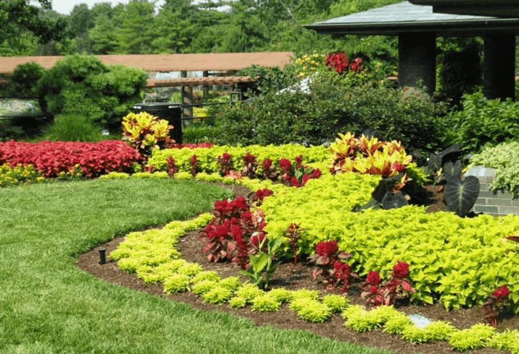 Botanical Gardens Mzx
