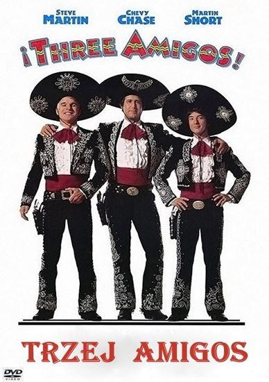 Trzej Amigos / !Three Amigos! (1986) PL.AC3.DVDRip.XviD-GR4PE | Lektor PL