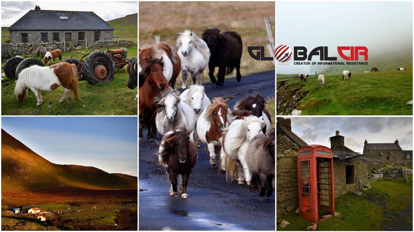 Otok Foula u Škotskoj ima samo 30 stanovnika, a maleni konji čuvaju ga od zaborava