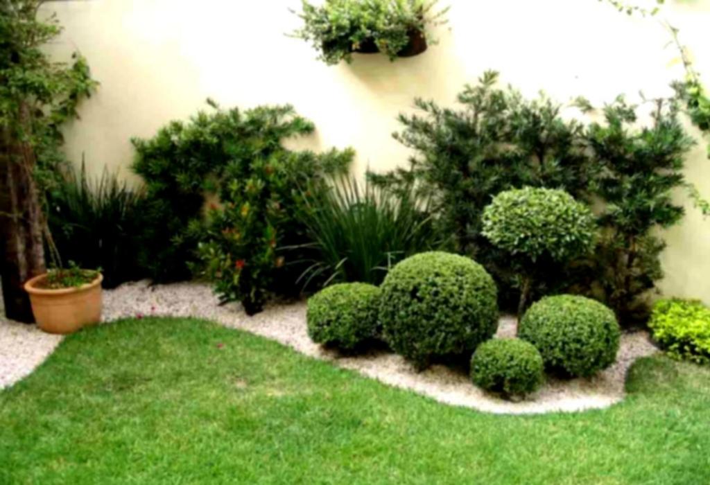 Sobralia Orchid Home Gardening Designs