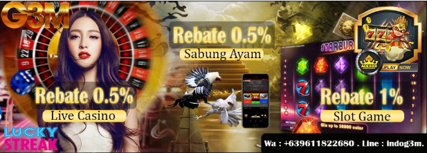 https://i.ibb.co/zXLXGjM/rebate-g3m.png