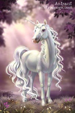 White-unicorn.jpg