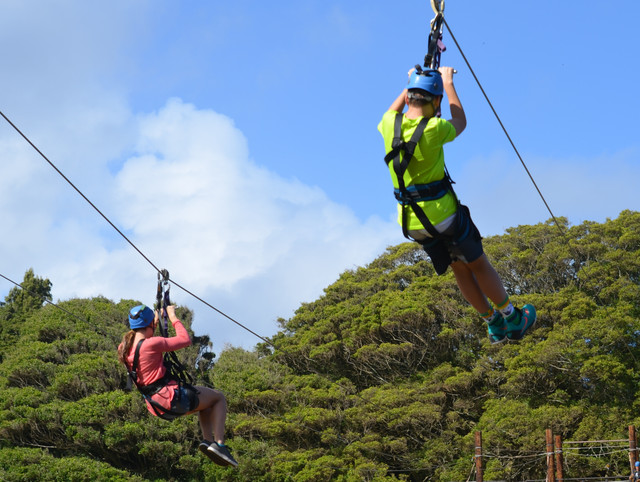 person-sun-sport-air-adventure-recreation-jumping-hawaii-extreme-sport-sports-slide-zipline-physical